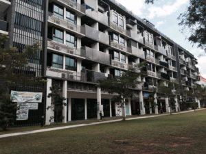 Kent Ridge Hill Residences viva vista mall