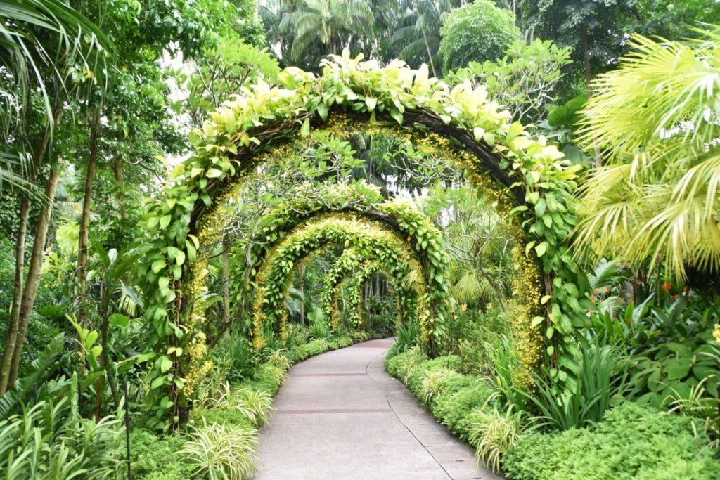 hyll-on-holland-condo-near-botanic-gardens-singapore